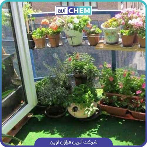 کود آهن برای گیاهان آپارتمانی